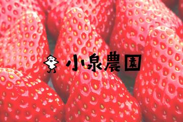 小泉農園 - わがままいちご